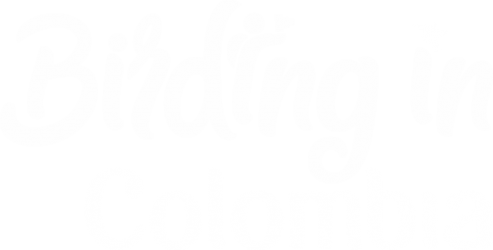Colombia Photo Tour